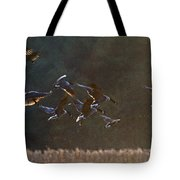 Back Lit Landing Tote Bag