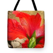 Back Of A Red Hibiscus Flower Against Stone Tote Bag