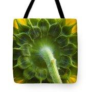 Back Of Sunflower Tote Bag