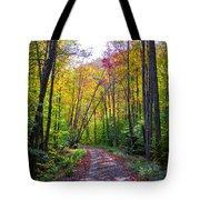 Back Road In The Adirondacks Tote Bag