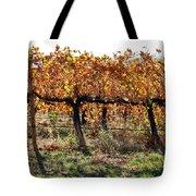 Backlit Autumn Vineyard Tote Bag