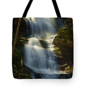 Backlit Buttermilk Tote Bag by Mark Robert Rogers