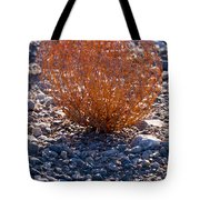 Backlit Color Tote Bag
