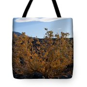 Backlit Desert Foliage Tote Bag