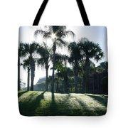 Backlit Palms Tote Bag