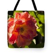 Backlit  Rose Tote Bag