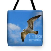 Backlit Seagull Tote Bag