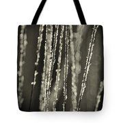 Backlit Sepia Toned Wild Grasses In Black And White Tote Bag