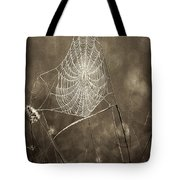 Backlit Spider Web In Sepia Tones Tote Bag