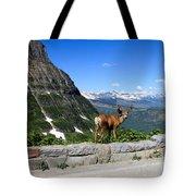Backwards Glance Tote Bag