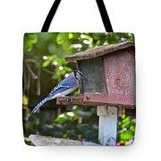 Backyard Bird Feeder Tote Bag