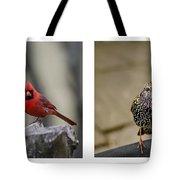 Backyard Bird Series Tote Bag