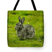 Backyard Bunny In Black White And Green Tote Bag