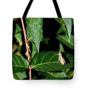 Backyard Hopper Tote Bag
