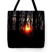 Backyard Sunset 2 Tote Bag