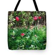 Backyard Tulips Tote Bag