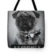Bad Dog Tote Bag by Edward Fielding