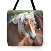Bad Hair Day 8024 Tote Bag