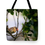 Bad Hair Day-female Northern Cardinal Tote Bag