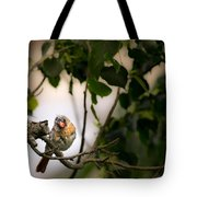 Bad Hair Day-the Rest Of The Story Tote Bag