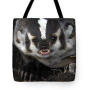 Badger-animal-image Tote Bag