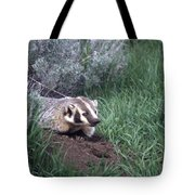 Badger In Yellowstone Tote Bag