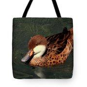 Bahama Pintail Duck Tote Bag