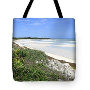 Bahia Honda Key Tote Bag