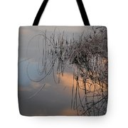 Balance Of Elements Tote Bag