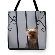 Balcony Dog Tote Bag