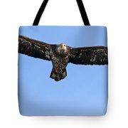 Bald Eagle 1238 Tote Bag