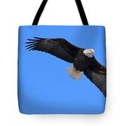 Bald Eagle 3772 Tote Bag