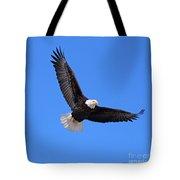 Bald Eagle 3773 Tote Bag