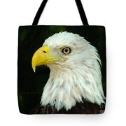Bald Eagle-42 Tote Bag