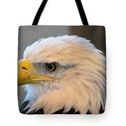 Bald Eagle 7615 Tote Bag