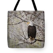 Bald Eagle At Belfry Mt Tote Bag by Roger Snyder