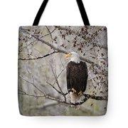 Bald Eagle At Belfry Mt Tote Bag