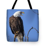 Bald Eagle Calling Tote Bag
