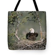 Bald Eagle Calling On Nest Alaska Tote Bag