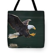 Bald Eagle Catching Fish Tote Bag by John Hyde