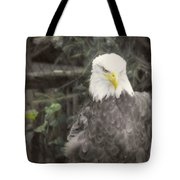 Bald Eagle Tote Bag by Dawn Gari