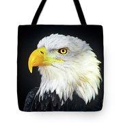 Bald Eagle Hailaeetus Leucocephalus Wildlife Rescue Tote Bag