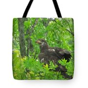Bald Eagle In A Tree  Tote Bag