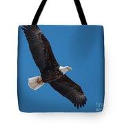 Bald Eagle In Flight 5 Tote Bag