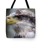 Bald Eagle - Juvenile - Profile Tote Bag