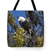 Bald Eagle On Nest Near The Oxbow Tote Bag