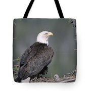 Bald Eagle On Nest With Chick Alaska Tote Bag by Michael Quinton