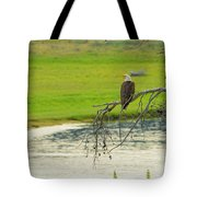 Bald Eagle Overlooking Yellowstone River Tote Bag
