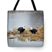 Bald Eagle Pair Tote Bag