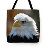 Bald Eagle Pose Tote Bag